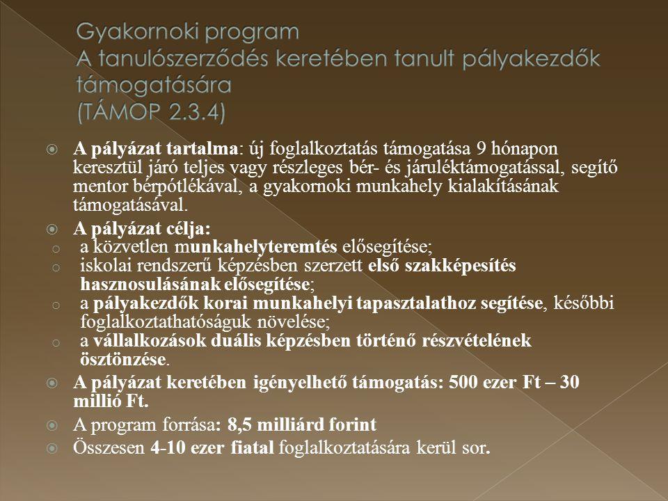  A pályázat tartalma: új foglalkoztatás támogatása 9 hónapon keresztül járó teljes vagy részleges bér- és járuléktámogatással, segítő mentor bérpótlé