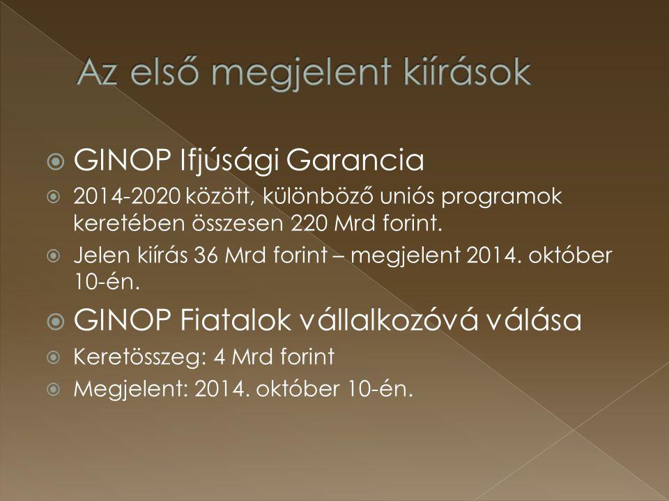  GINOP Ifjúsági Garancia  2014-2020 között, különböző uniós programok keretében összesen 220 Mrd forint.  Jelen kiírás 36 Mrd forint – megjelent 20