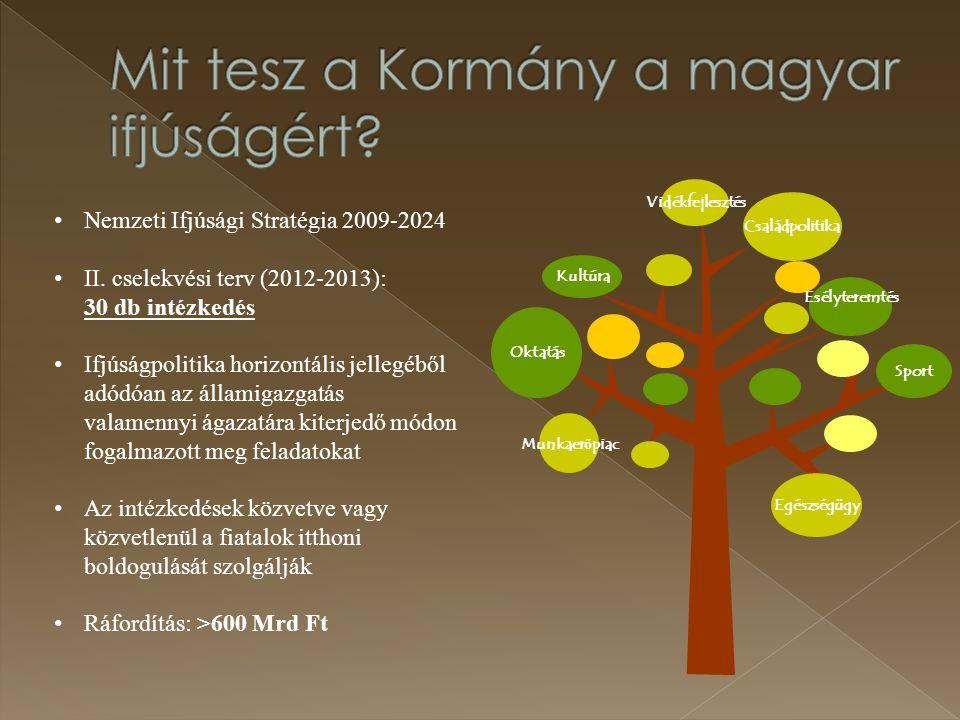 Oktatás Munkaer ő piac Sport Családpolitika Vidékfejlesztés Kultúra Esélyteremtés Egészségügy Nemzeti Ifjúsági Stratégia 2009-2024 II. cselekvési terv