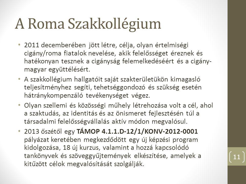 A Roma Szakkollégium 2011 decemberében jött létre, célja, olyan értelmiségi cigány/roma fiatalok nevelése, akik felelősséget éreznek és hatékonyan tes