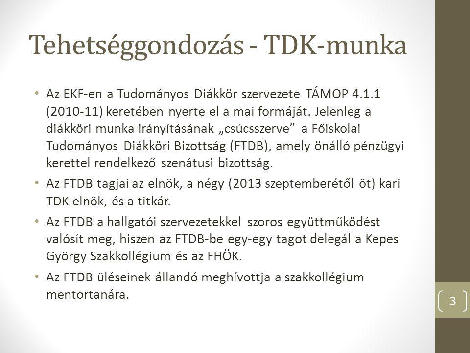 Tehetségműhelyek A BTK-n 9, a GTK-n 3, a TKTK-n 4, a TTK-n pedig 6 tehetségműhely működik jelen pillanatban.