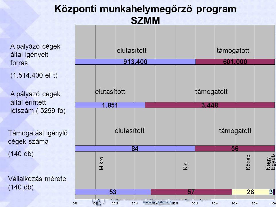 Központi munkahelymegőrző program SZMM Vállalkozás mérete (140 db) MikroKis Közép NagyEgyéb Támogatást igénylő cégek száma (140 db) elutasítotttámogatott A pályázó cégek által érintett létszám ( 5299 fő) elutasítotttámogatott A pályázó cégek által igényelt forrás (1.514.400 eFt) elutasítotttámogatott