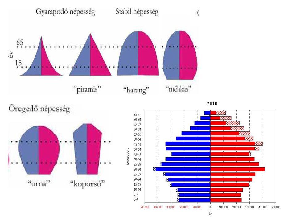IV.A meghatározó tényezők 1. természetes szaporodás/fogyás 2.