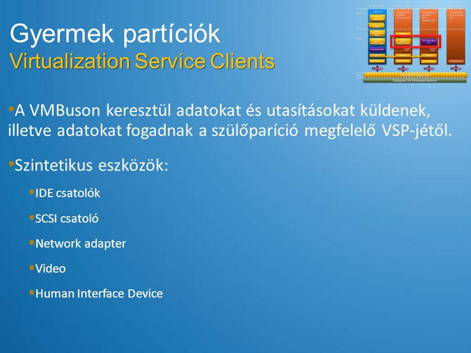 A VMBuson keresztül adatokat és utasításokat küldenek, illetve adatokat fogadnak a szülőparíció megfelelő VSP-jétől. Szintetikus eszközök:  IDE csato