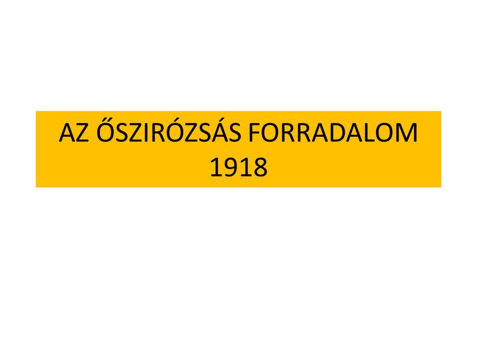 AZ ŐSZIRÓZSÁS FORRADALOM 1918