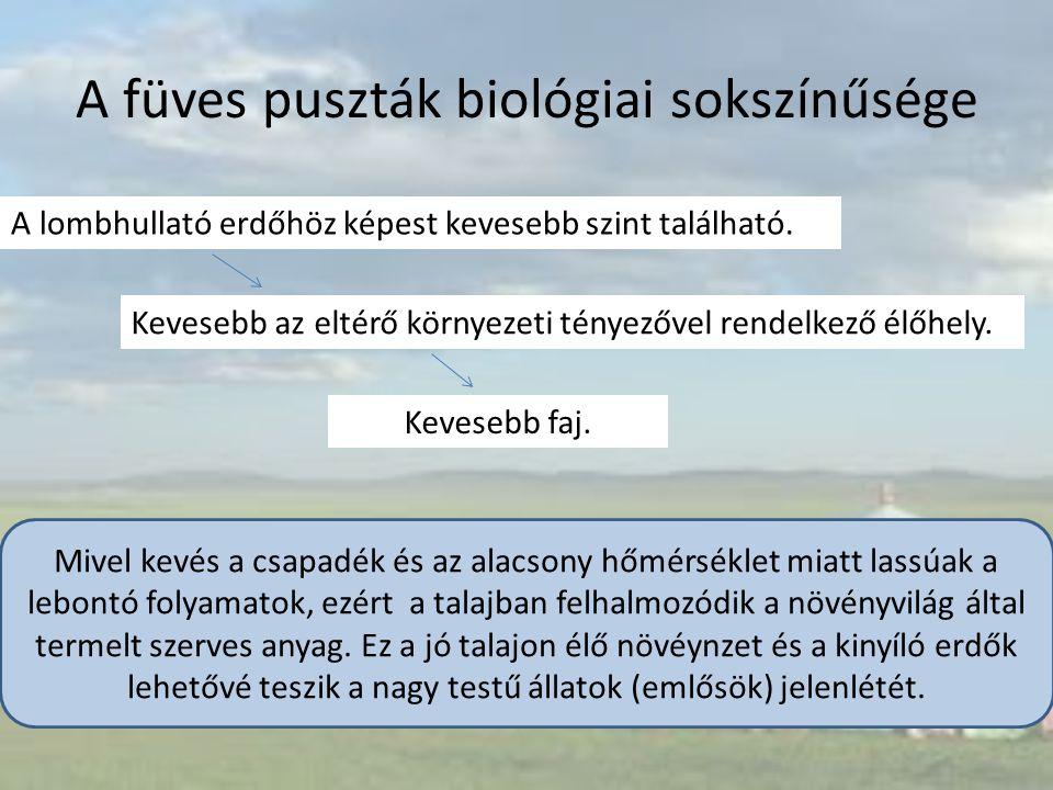 A füves puszták biológiai sokszínűsége A lombhullató erdőhöz képest kevesebb szint található. Kevesebb az eltérő környezeti tényezővel rendelkező élőh