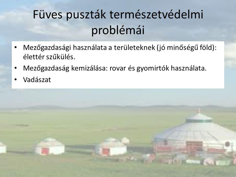 Füves puszták természetvédelmi problémái Mezőgazdasági használata a területeknek (jó minőségű föld): élettér szűkülés. Mezőgazdaság kemizálása: rovar