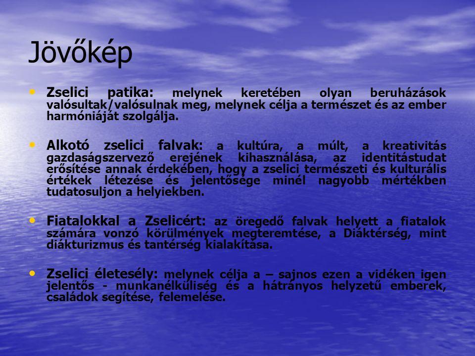 Jövőkép Zselici patika: melynek keretében olyan beruházások valósultak/valósulnak meg, melynek célja a természet és az ember harmóniáját szolgálja.