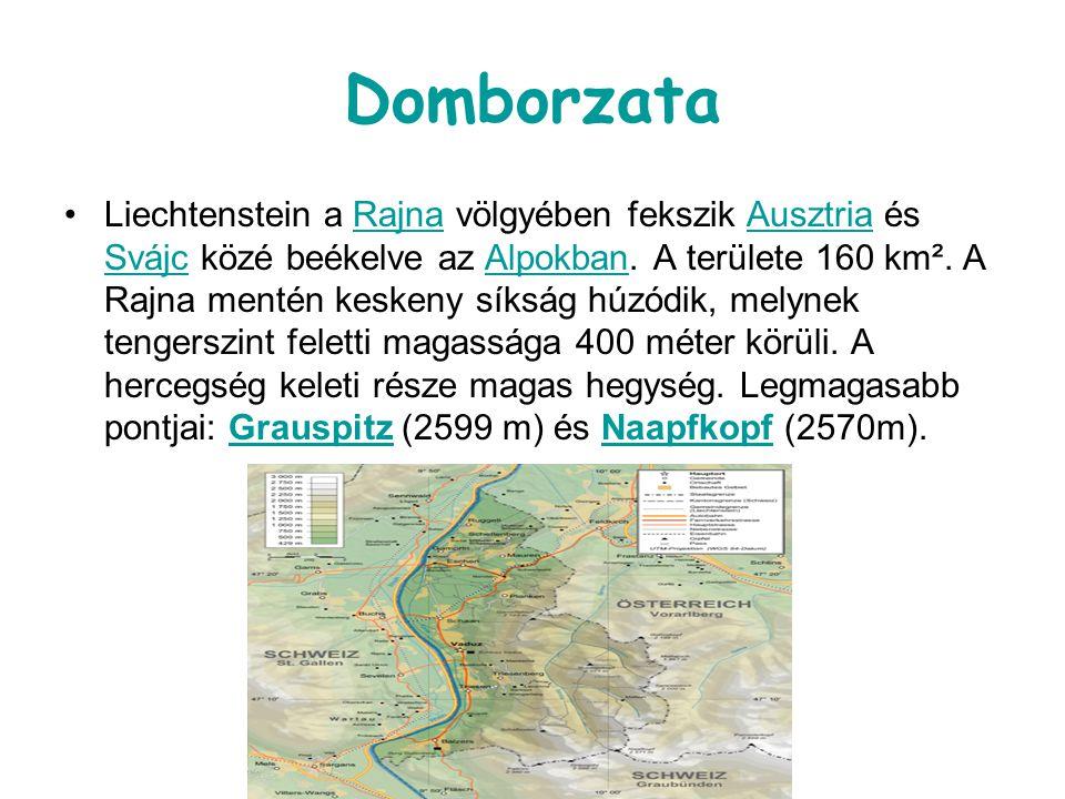 Domborzata Liechtenstein a Rajna völgyében fekszik Ausztria és Svájc közé beékelve az Alpokban. A területe 160 km². A Rajna mentén keskeny síkság húzó