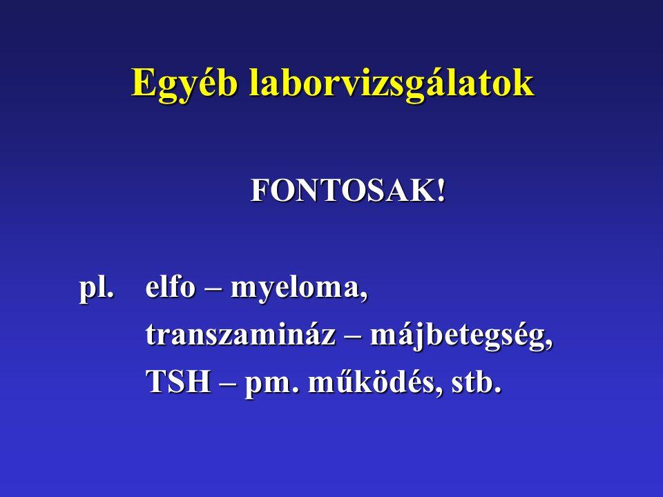 Egyéb laborvizsgálatok FONTOSAK. pl. elfo – myeloma, transzamináz – májbetegség, TSH – pm.