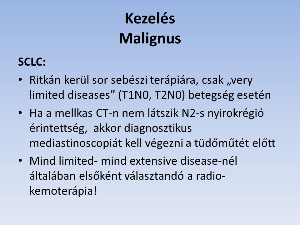 """Kezelés Malignus SCLC: Ritkán kerül sor sebészi terápiára, csak """"very limited diseases"""" (T1N0, T2N0) betegség esetén Ha a mellkas CT-n nem látszik N2-"""