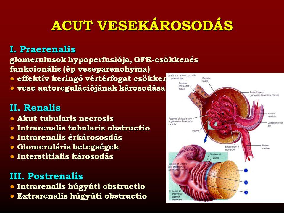PRAERENALIS TÍPUSÚ PRAERENALIS TÍPUSÚ VESEKÁROSODÁS OKAI A renális autoreguláció károsodása ● afferens arteriola vazokonstrikciója hepatorenális szindróma hepatorenális szindróma sepsis sepsis hypercalcaemia hypercalcaemia gyógyszerek (NSAID, cyclosporin, adrenalin, noradrenalin) gyógyszerek (NSAID, cyclosporin, adrenalin, noradrenalin) ● efferens arteriola vazodilatációja ACE inhibitorok ACE inhibitorok ARB ARB