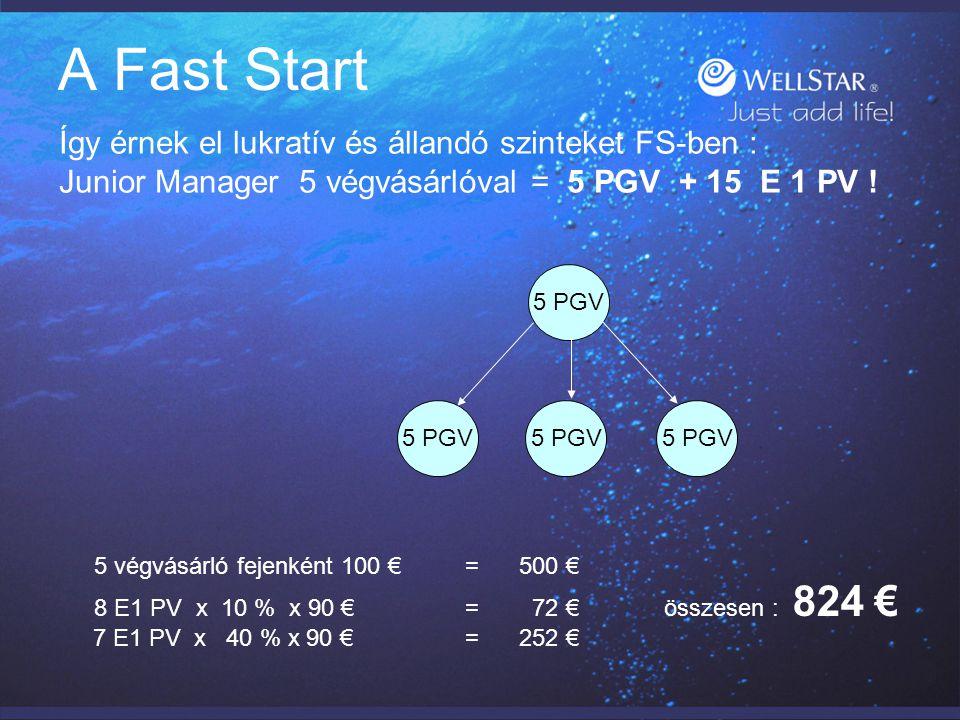 A Fast Start Így érnek el lukratív és állandó szinteket FS-ben : Exec.