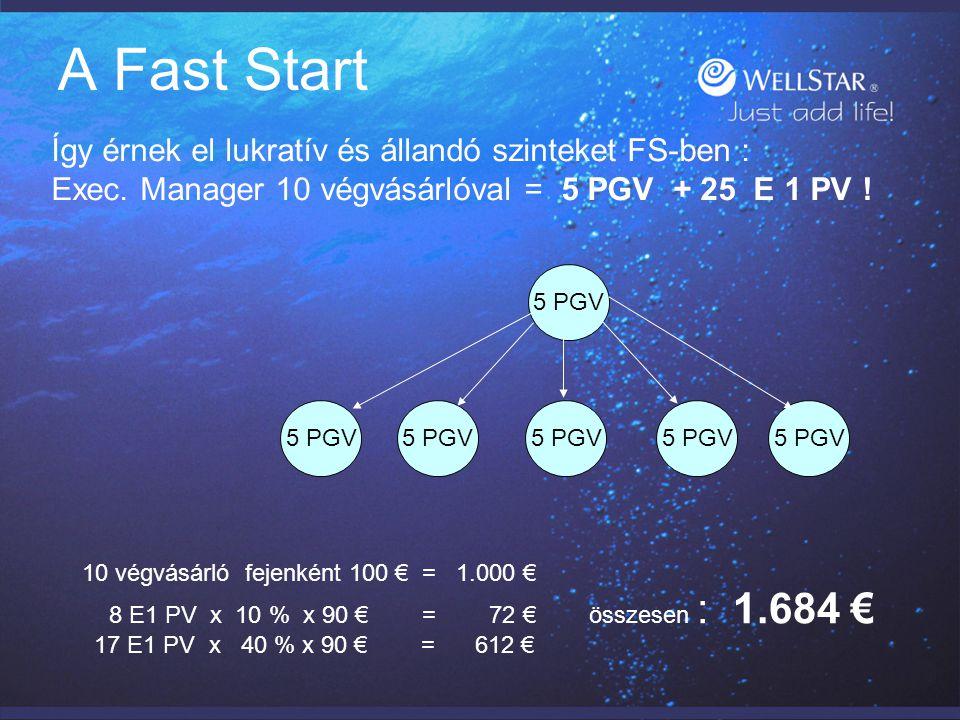 A Fast Start Exec.Igazgató 20 végvásárlóval = 5 PGV + 25 E 1 PV .