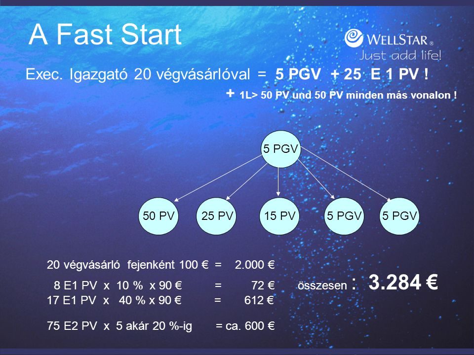 Személyes csoportok – PGV Rendszeres passzív mellékjövedelem : A Faststart után: Jutalékok : 0 bis 20 PGV = bis 50 € EK-előfizetésenként .