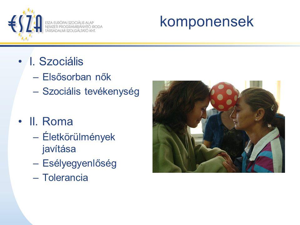 komponensek I. Szociális –Elsősorban nők –Szociális tevékenység II. Roma –Életkörülmények javítása –Esélyegyenlőség –Tolerancia