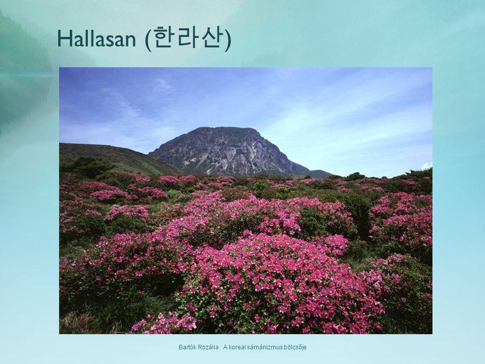 Bartók Rozália : A koreai sámánizmus bölcsője Hallasan ( 한라산 )