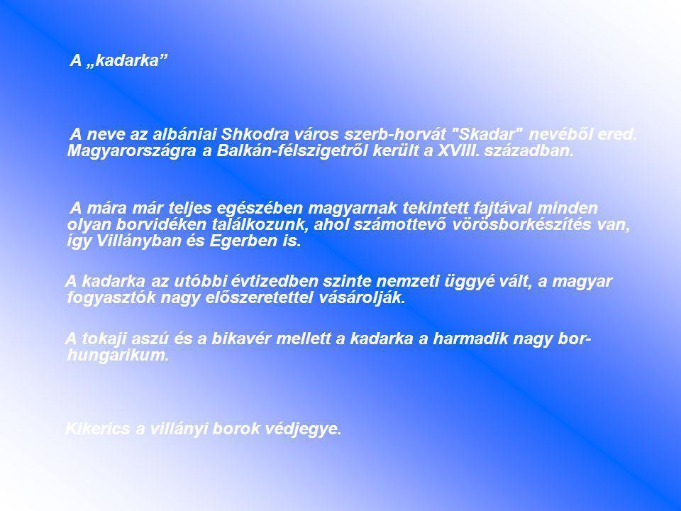 """A """"kadarka A neve az albániai Shkodra város szerb-horvát Skadar nevéből ered."""
