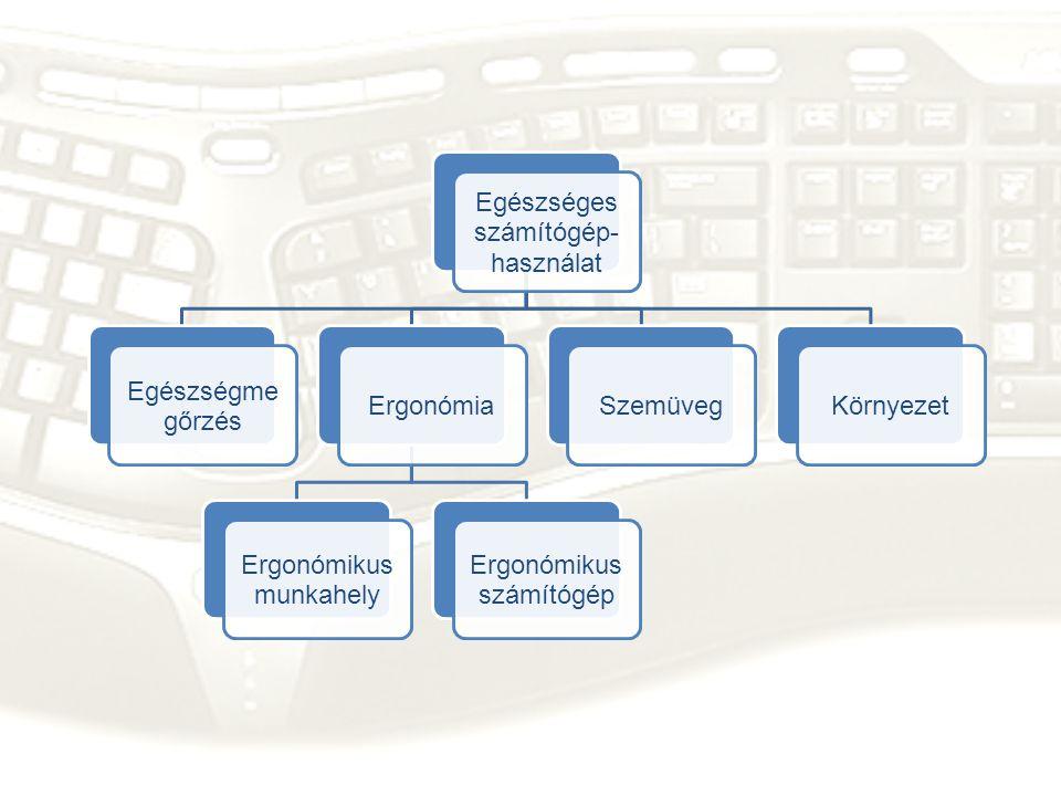 Egészséges számítógép- használat Egészségme gőrzés Ergonómia Ergonómikus munkahely Ergonómikus számítógép SzemüvegKörnyezet