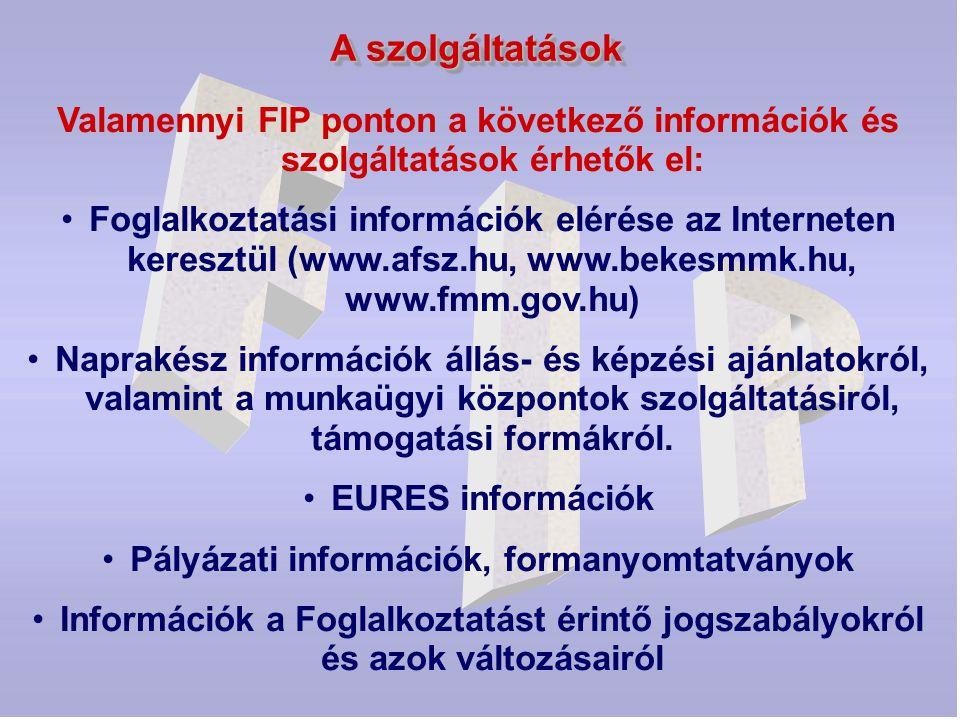 A szolgáltatások Valamennyi FIP ponton a következő információk és szolgáltatások érhetők el: Foglalkoztatási információk elérése az Interneten kereszt