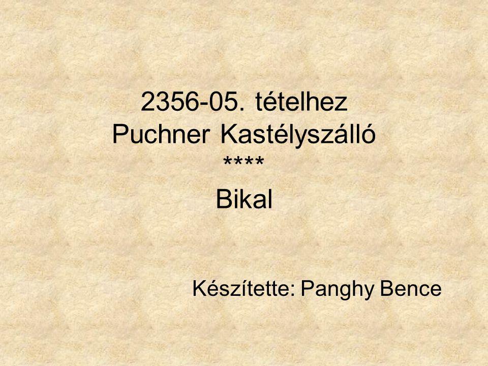 2356-05. tételhez Puchner Kastélyszálló **** Bikal Készítette: Panghy Bence
