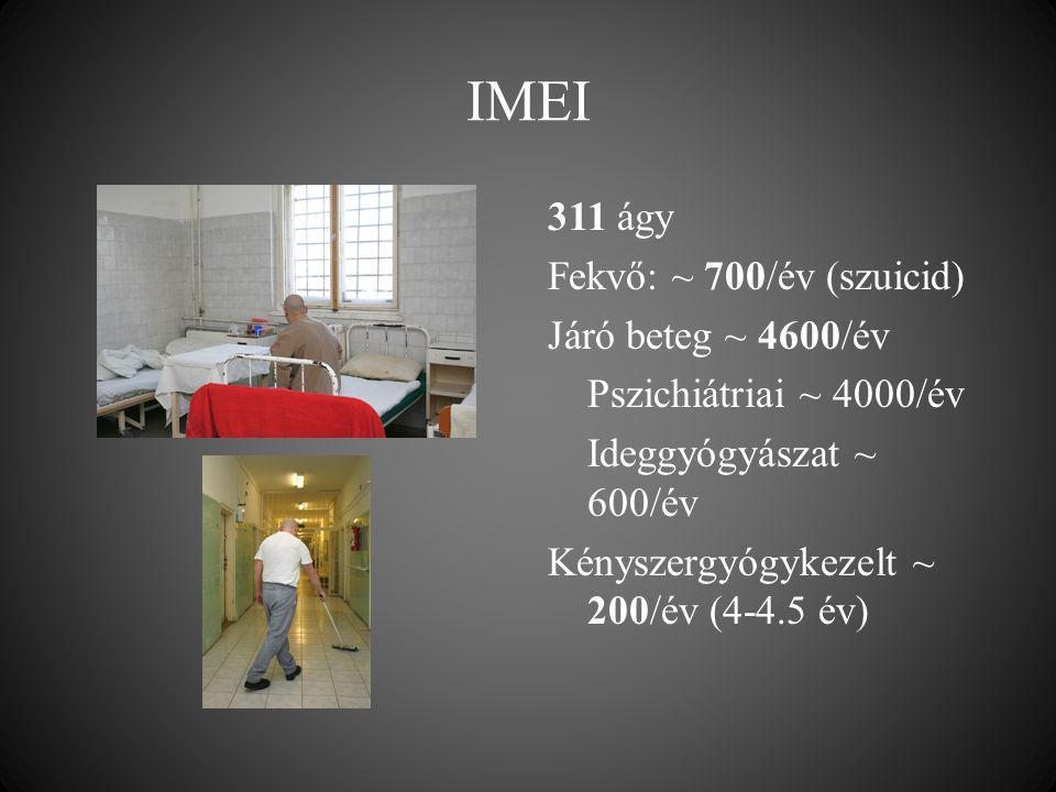 IMEI 311 ágy Fekvő: ~ 700/év (szuicid) Járó beteg ~ 4600/év Pszichiátriai ~ 4000/év Ideggyógyászat ~ 600/év Kényszergyógykezelt ~ 200/év (4-4.5 év)