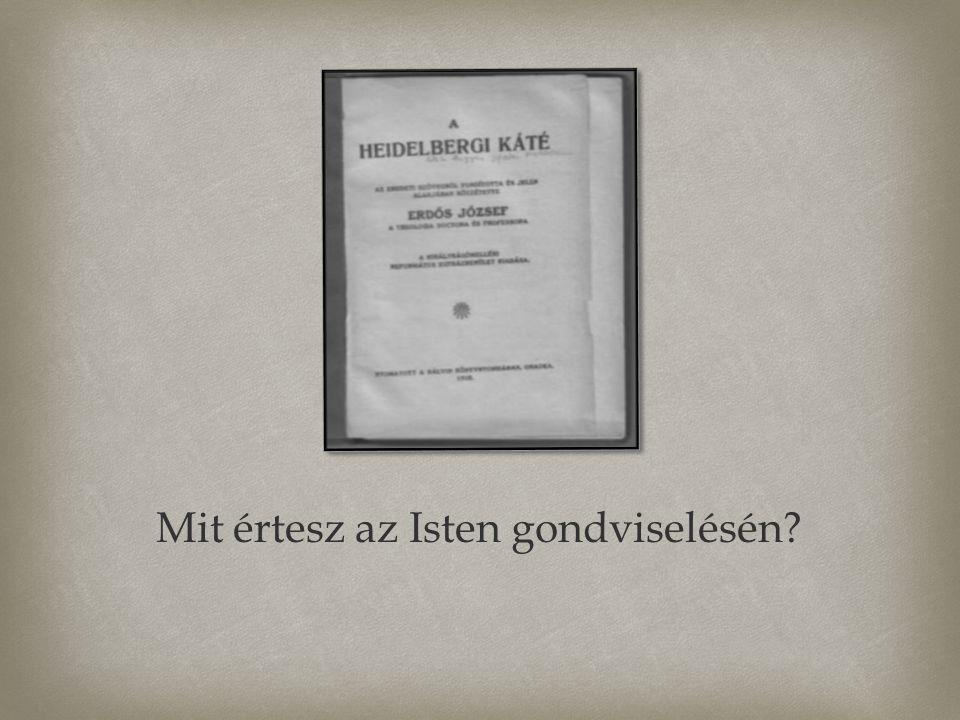  A Heidelbergi Káté tavaly (2013) 450 éves évfordulóját ünnepelte