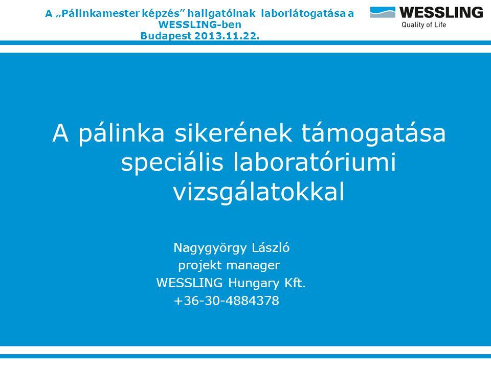 """A """"Pálinkamester képzés hallgatóinak laborlátogatása a WESSLING-ben Budapest 2013.11.22."""