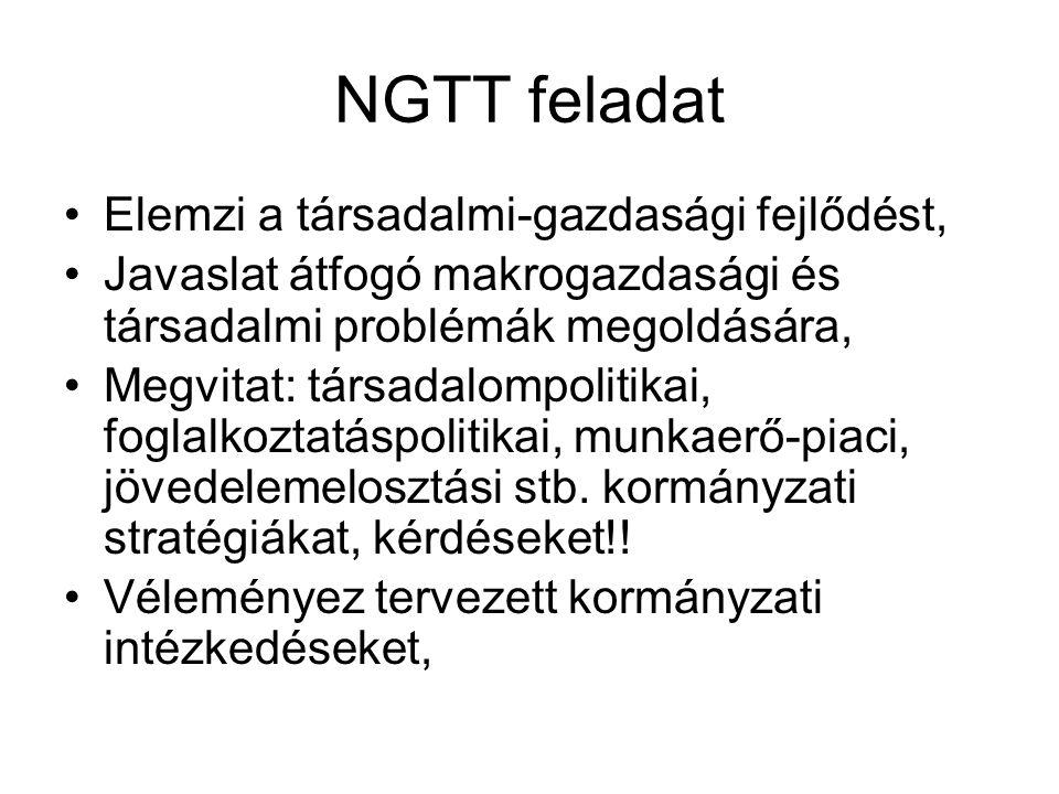 NGTT feladat Elemzi a társadalmi-gazdasági fejlődést, Javaslat átfogó makrogazdasági és társadalmi problémák megoldására, Megvitat: társadalompolitika