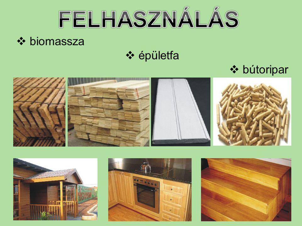  biomassza  épületfa  bútoripar