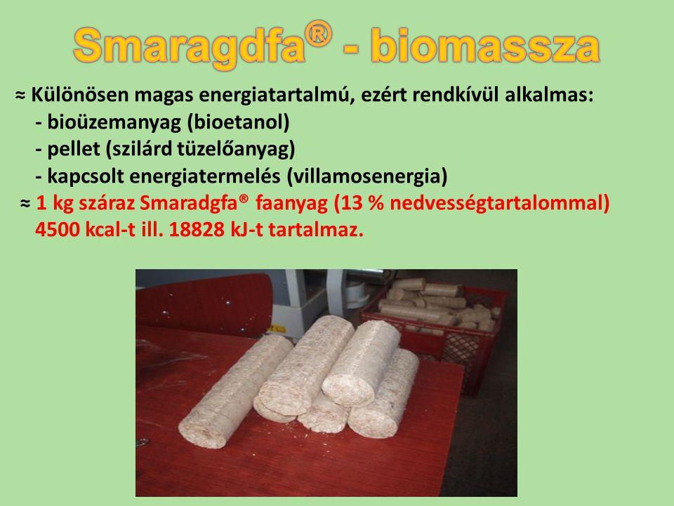 ≈ Különösen magas energiatartalmú, ezért rendkívül alkalmas: - bioüzemanyag (bioetanol) - pellet (szilárd tüzelőanyag) - kapcsolt energiatermelés (vil