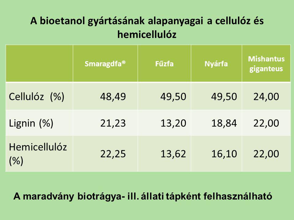 A bioetanol gyártásának alapanyagai a cellulóz és hemicellulóz Smaragdfa®FűzfaNyárfa Mishantus giganteus Cellulóz (%) 48,49 49,50 24,00 Lignin (%) 21,