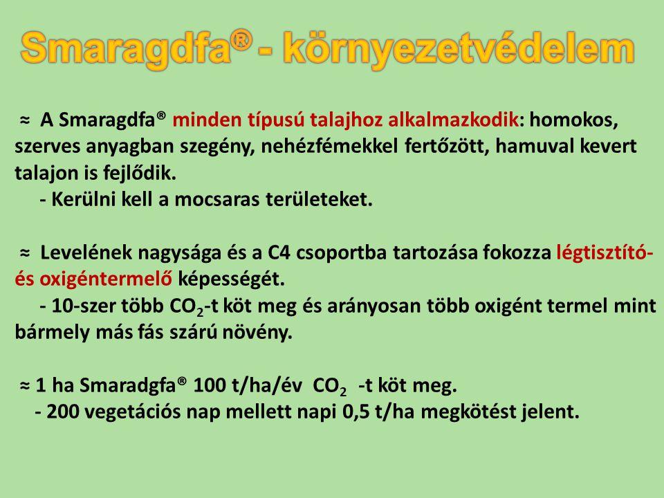 ≈ A Smaragdfa® minden típusú talajhoz alkalmazkodik: homokos, szerves anyagban szegény, nehézfémekkel fertőzött, hamuval kevert talajon is fejlődik. -