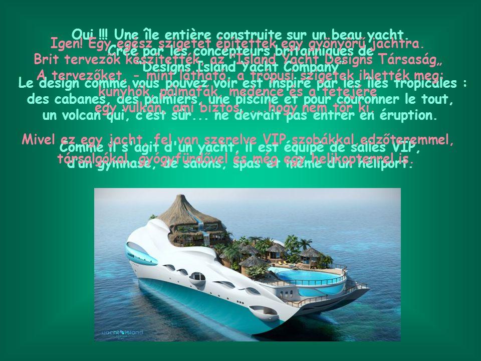 Le bateau construit en acier mesure 90 mètres de long et sa vitesse max est de 15 noeuds.
