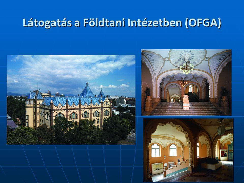 Látogatás a Földtani Intézetben (OFGA)
