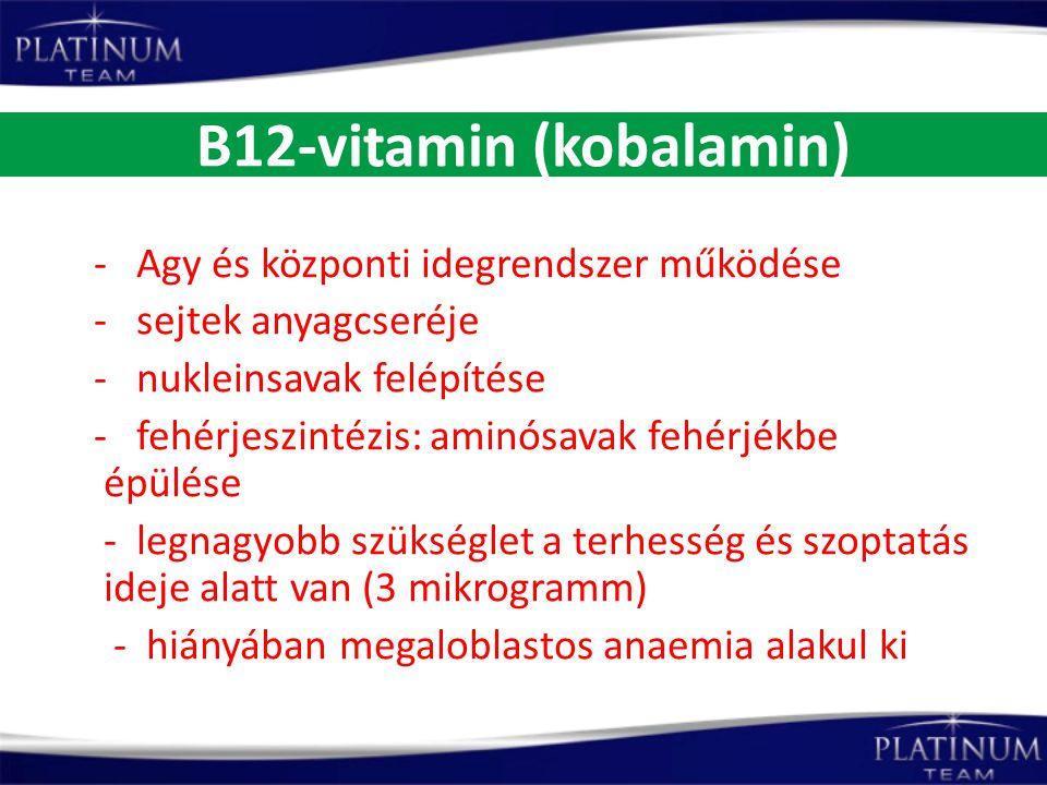 B12-vitamin (kobalamin) - Agy és központi idegrendszer működése - sejtek anyagcseréje - nukleinsavak felépítése - fehérjeszintézis: aminósavak fehérjé