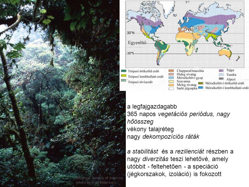 a legfajgazdagabb 365 napos vegetációs periódus, nagy hőösszeg vékony talajréteg nagy dekompozíciós ráták a stabilitást és a rezilienciát részben a na