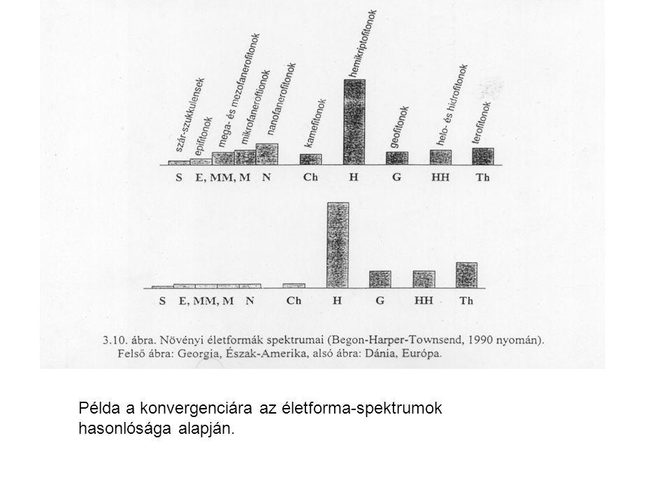 Példa a konvergenciára az életforma-spektrumok hasonlósága alapján.