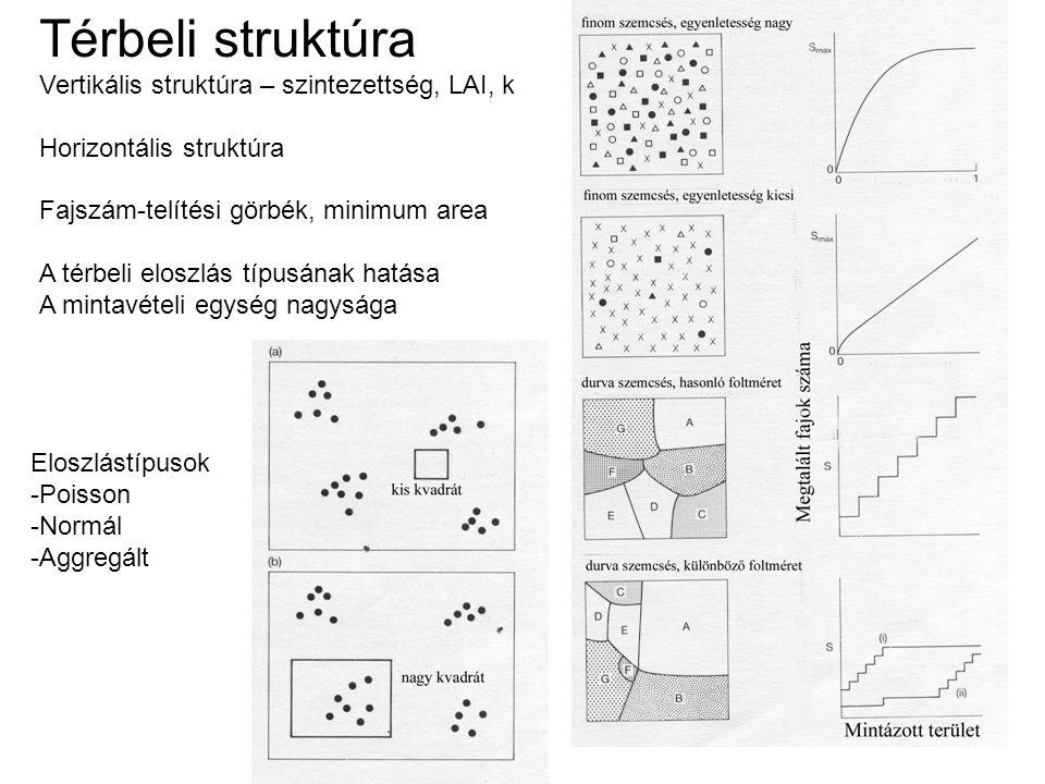 Térbeli struktúra Vertikális struktúra – szintezettség, LAI, k Horizontális struktúra Fajszám-telítési görbék, minimum area A térbeli eloszlás típusán