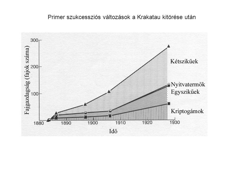 Primer szukcessziós változások a Krakatau kitörése után