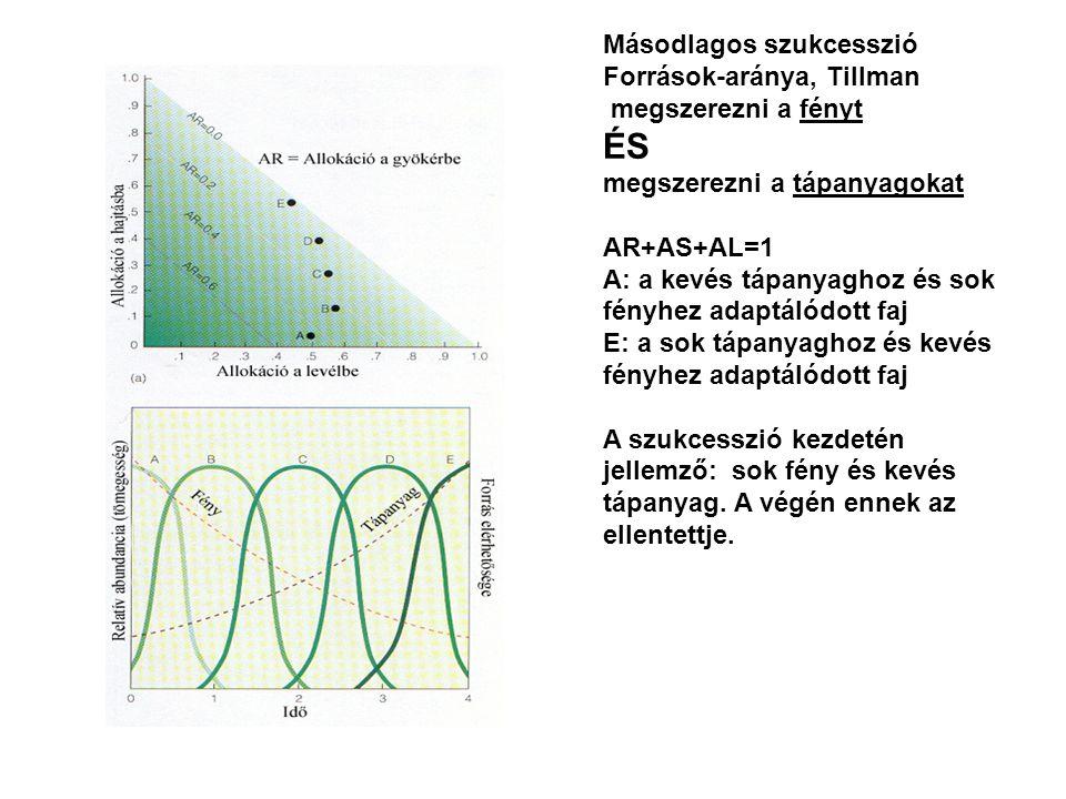 Másodlagos szukcesszió Források-aránya, Tillman megszerezni a fényt ÉS megszerezni a tápanyagokat AR+AS+AL=1 A: a kevés tápanyaghoz és sok fényhez ada