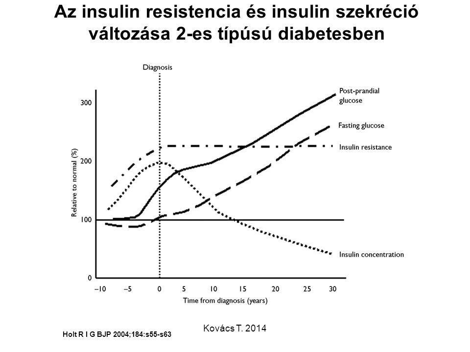 Az insulin resistencia és insulin szekréció változása 2-es típúsú diabetesben Holt R I G BJP 2004;184:s55-s63 Kovács T. 2014