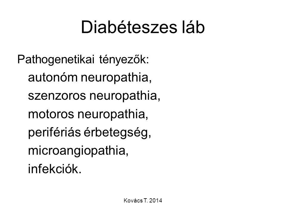 Diabéteszes láb Pathogenetikai tényezők: autonóm neuropathia, szenzoros neuropathia, motoros neuropathia, perifériás érbetegség, microangiopathia, inf