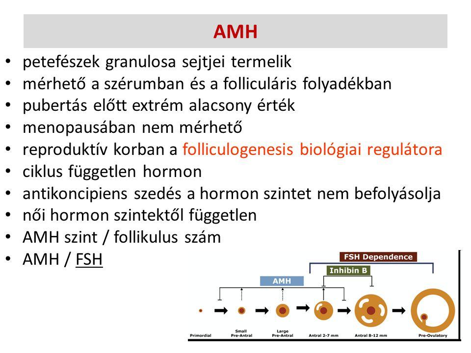 AMH petefészek granulosa sejtjei termelik mérhető a szérumban és a folliculáris folyadékban pubertás előtt extrém alacsony érték menopausában nem mérh