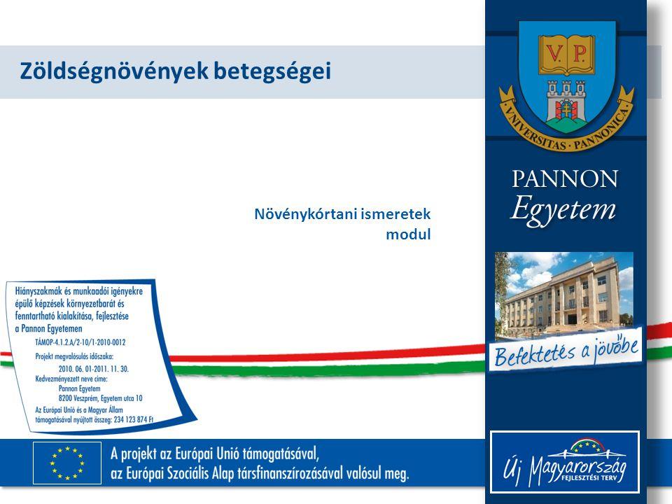 TÁMOP-4.1.2.A/2-10/1-2010-0012 1.Sorolja fel a tananyagban szereplő valamely zöldségnövény (pl.