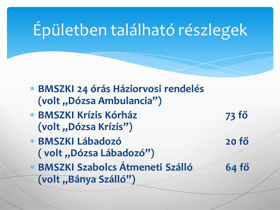 """ BMSZKI 24 órás Háziorvosi rendelés (volt """"Dózsa Ambulancia"""")  BMSZKI Krízis Kórház 73 fő (volt """"Dózsa Krízis"""")  BMSZKI Lábadozó 20 fő ( volt """"Dózs"""