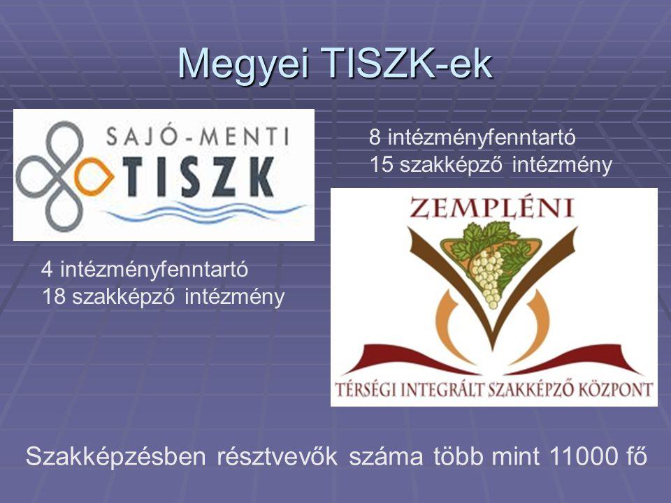 Megyei TISZK-ek 4 intézményfenntartó 18 szakképző intézmény 8 intézményfenntartó 15 szakképző intézmény Szakképzésben résztvevők száma több mint 11000 fő