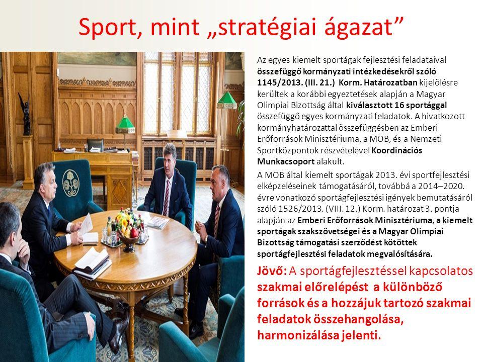 """Sport, mint """"stratégiai ágazat Az egyes kiemelt sportágak fejlesztési feladataival összefüggő kormányzati intézkedésekről szóló 1145/2013."""