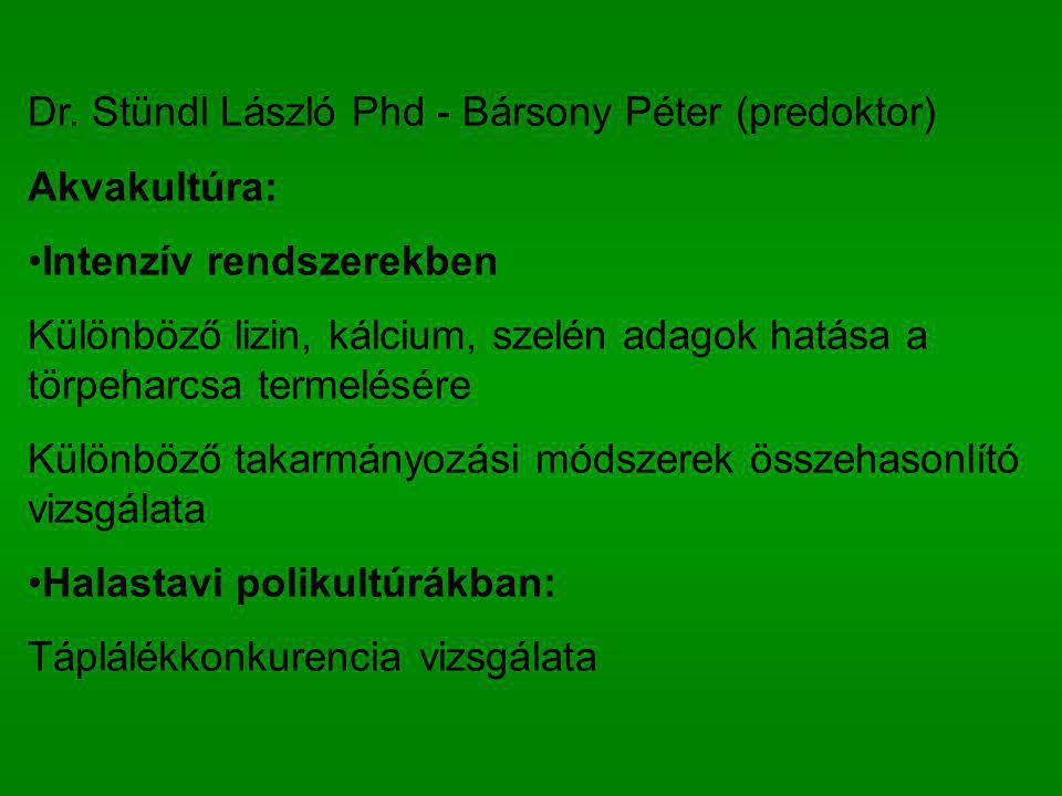 Dr. Stündl László Phd - Bársony Péter (predoktor) Akvakultúra: Intenzív rendszerekben Különböző lizin, kálcium, szelén adagok hatása a törpeharcsa ter