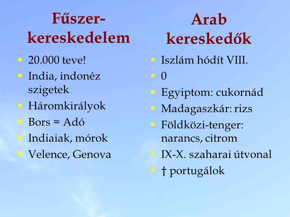 Fűszer- kereskedelem  20.000 teve!  India, indonéz szigetek  Háromkirályok  Bors = Adó  Indiaiak, mórok  Velence, Genova  Iszlám hódít VIII. 
